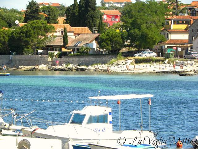 Zambrattia Istria