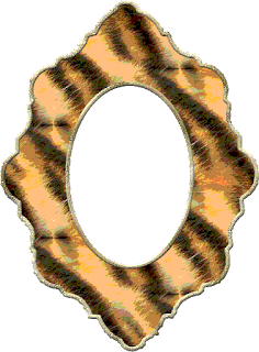 marcos para fotos,frame,animal print,chic,fashion,png,elementos,scrap