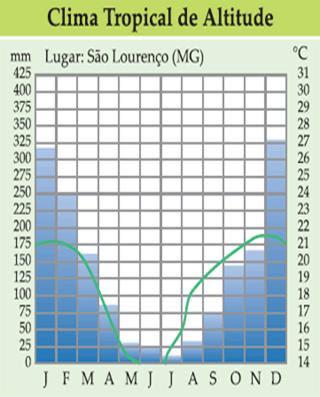 Resultado de imagem para climograma do clima subtropical brasileiro