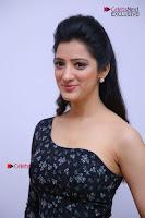 Telugu Actress Richa Panai Stills in One Shoulder Floral Long Dress at Rakshaka Bhatudu Movie Interview  0101.JPG
