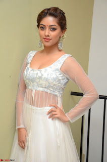 Anu Emmanuel in a Transparent White Choli Cream Ghagra Stunning Pics 087.JPG
