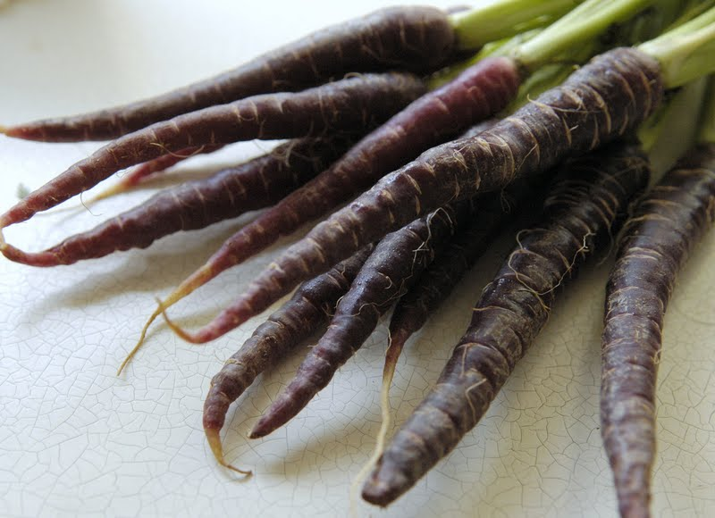 Because Purple Carrots Have A Gazillion Times More Antioxidants Than Orange Well 2x Beta Carotene And 28x Anthocyanins Anyway