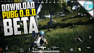alfisbu pubg mobile download install main