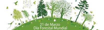 Resultado de imagen para dia forestal