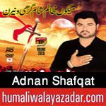 http://www.humaliwalayazadar.com/2015/10/adnan-shafqat-nohay-2016.html