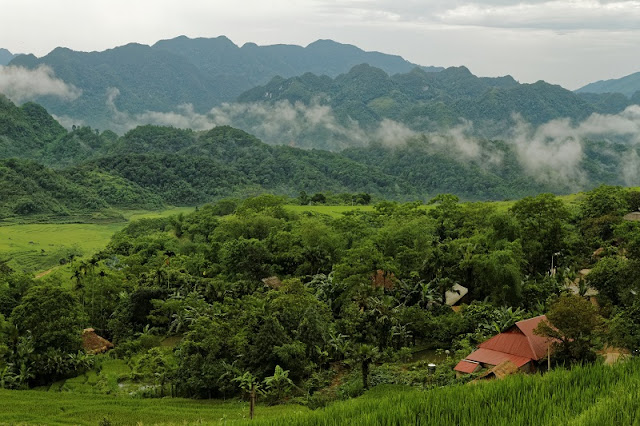 Pu Luong Nature Reserve - An interesting place to visit 1