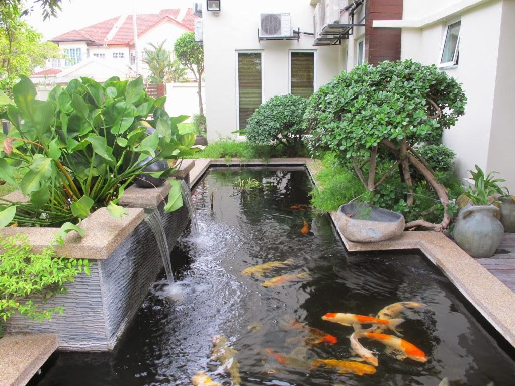 Best Minimalist Modern Fish Pond Design Ideas 2014 Ideas Picture Photo Latest Modern Home Designs