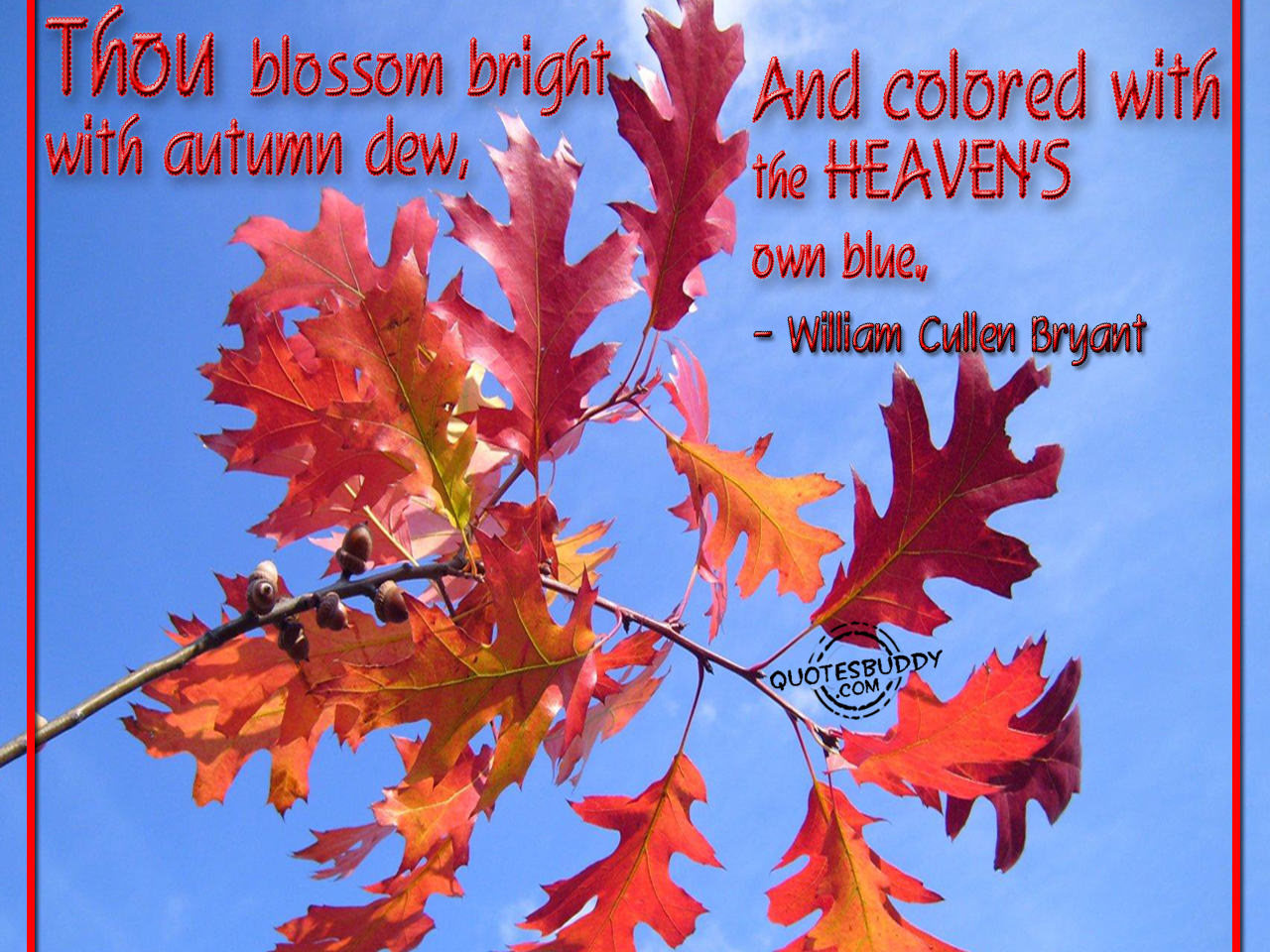 Fall Quotes: Autumn Weddings Pics