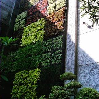 Tukang taman surabaya - taman vertikal