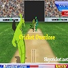 Online cricket overdose game
