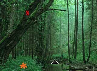Big Forest Land Escape - Juegos de Escape