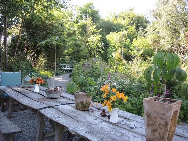 Gartentisch mit Aralien in Hunting Brook Gardens