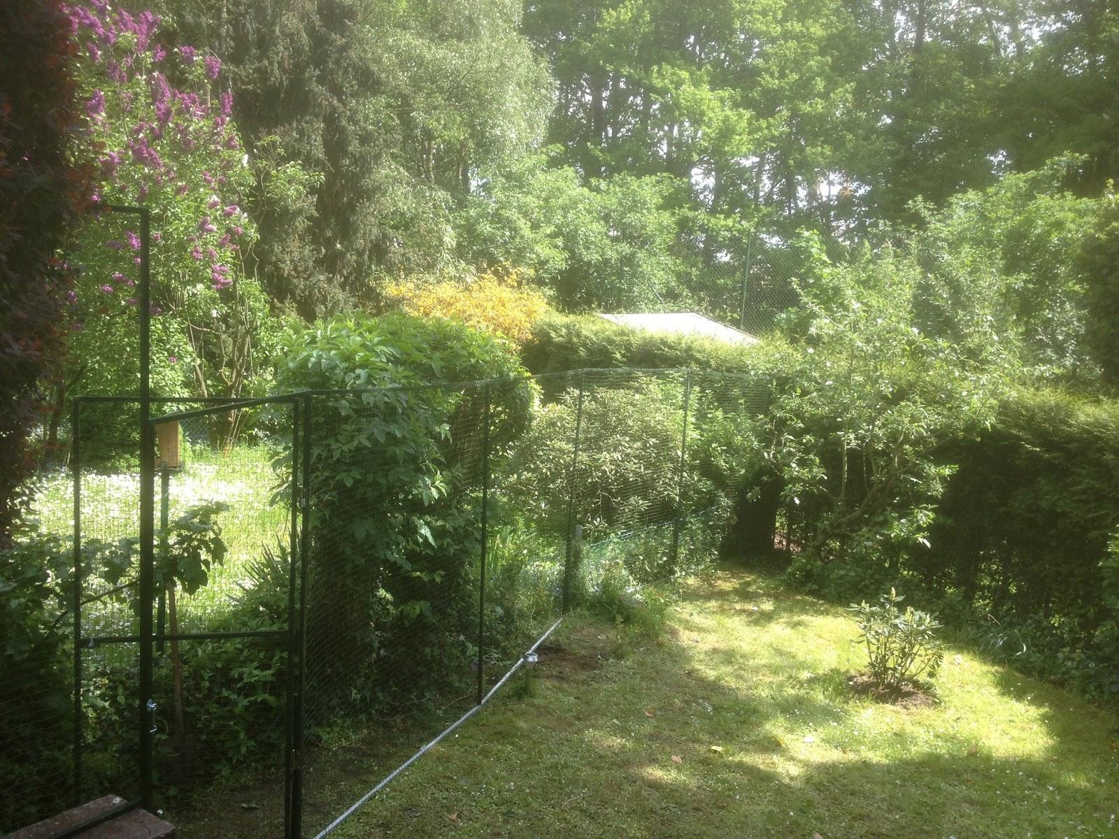 Katzennetz Garten Düsseldorf