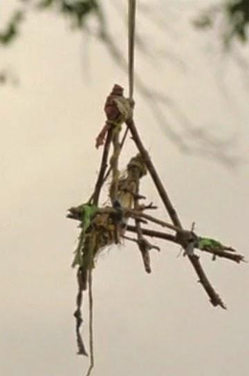 Las 'espeluznantes' palillo Teepees: estructuras de celosía llamadas trampas para pájaros o redes del diablo