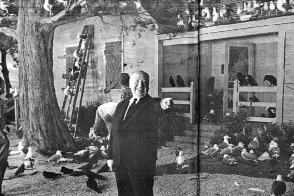 60 Iconic Behind-The-Scenes Pictures Of Actors That Underline The Difference Between Movies And Reality - Those birds were a whole lot scarier in Hitchcock's The Birds