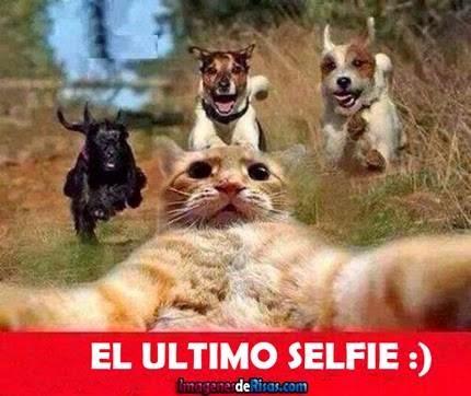 El Ultimo Selfie seguro de vida