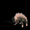 Guía de criaturas de la Galaxia Sporeana ~ Parte 1 ~ (Spore Galaxies: The Fallen) Cucaracha%2Brinoceronte%2B2
