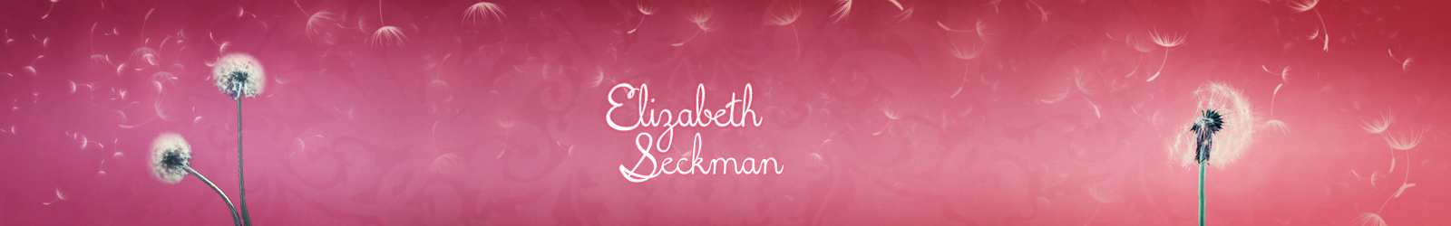 Elizabeth Seckman, Author
