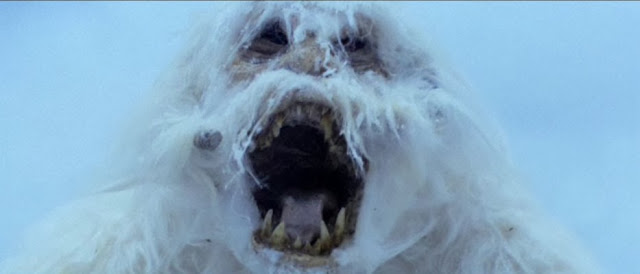 wampa from Empire Strikes Back