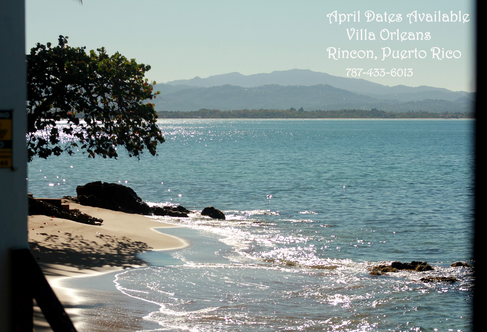 Beach House For Sale Rincon Puerto Rico