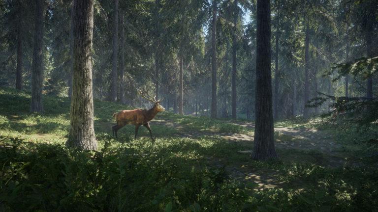 تحميل لعبة the hunter call of the wild