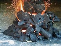 Resultado de imagen de carbon como fuente de energia
