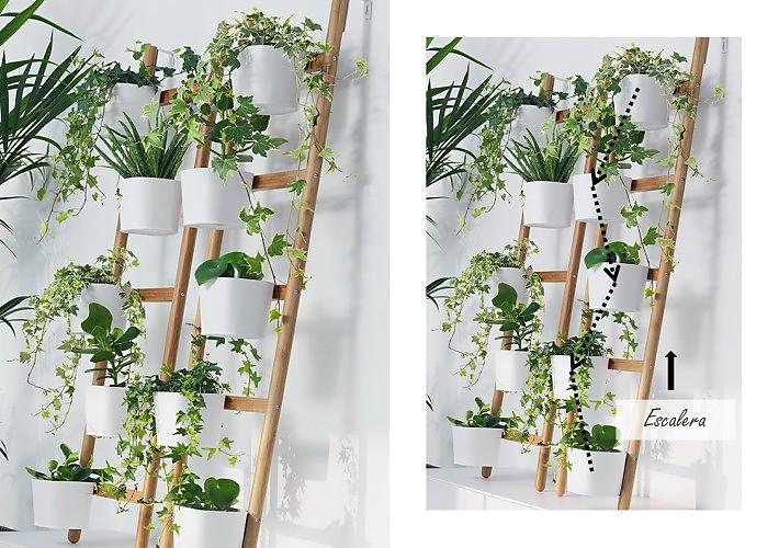 Cómo hacer composiciones con plantas