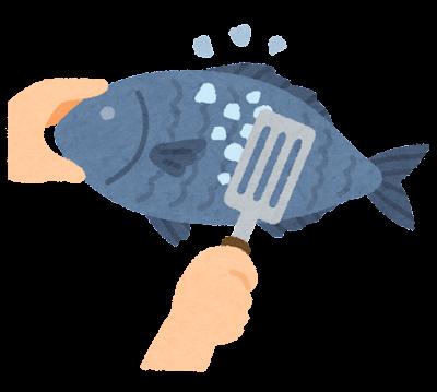 魚の鱗をとっているイラスト(うろこ引き)