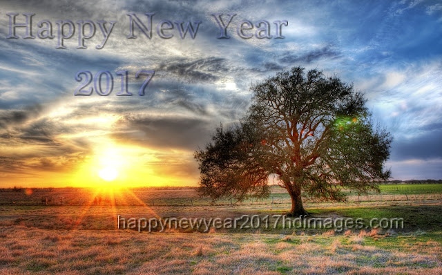 Happy New Year 2017 Nature Wallpapers