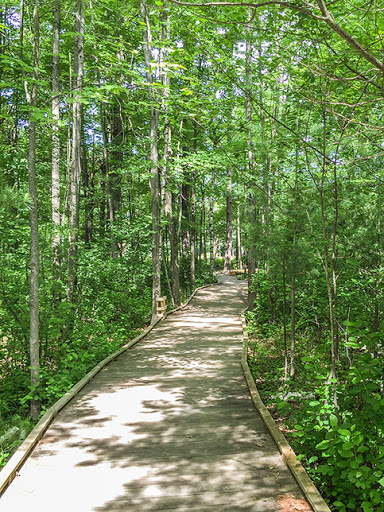 Boardwalk on The Green Circle Bike Trail in Stevens Point Wisconsin