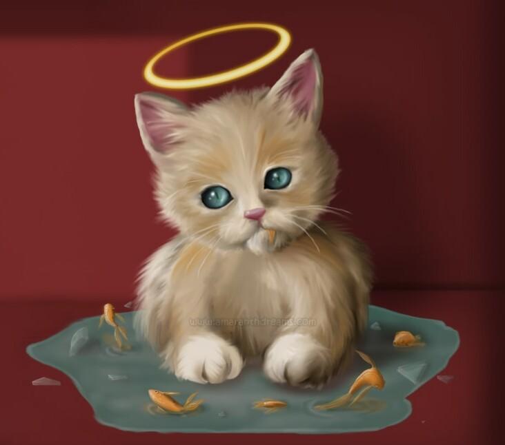 My Wallpapers Corner Angel Kitty Cute Cat Wallpaper