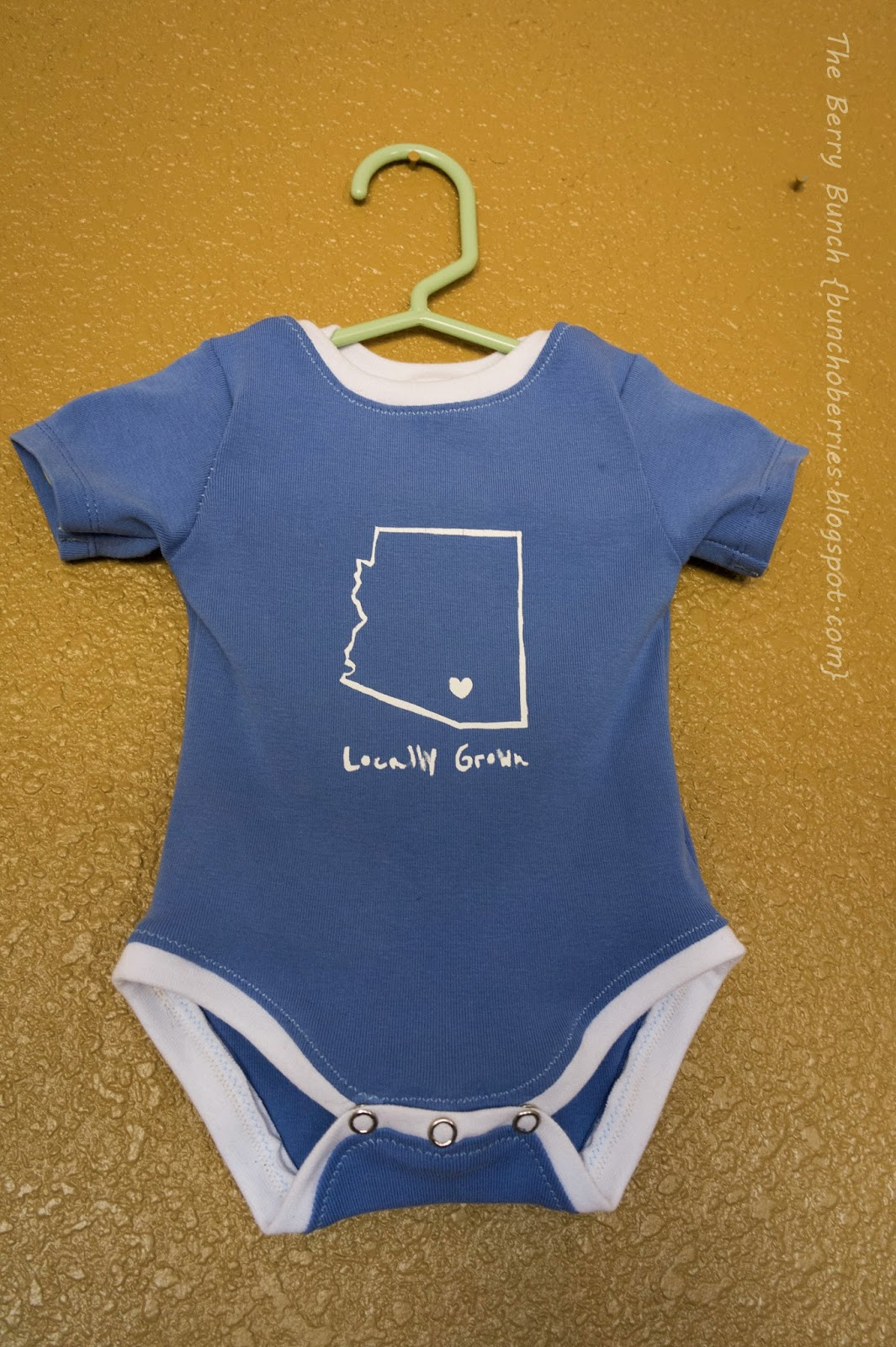 Locally Grown Baby Bodysuit: Peek-A-Boo Pattern Shop Lullaby Bodysuit: The Berry Bunch