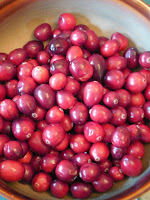 cranberry science lesson
