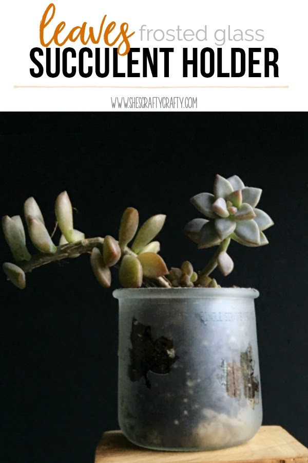 Leaves Frosted Glass Succulent Holder
