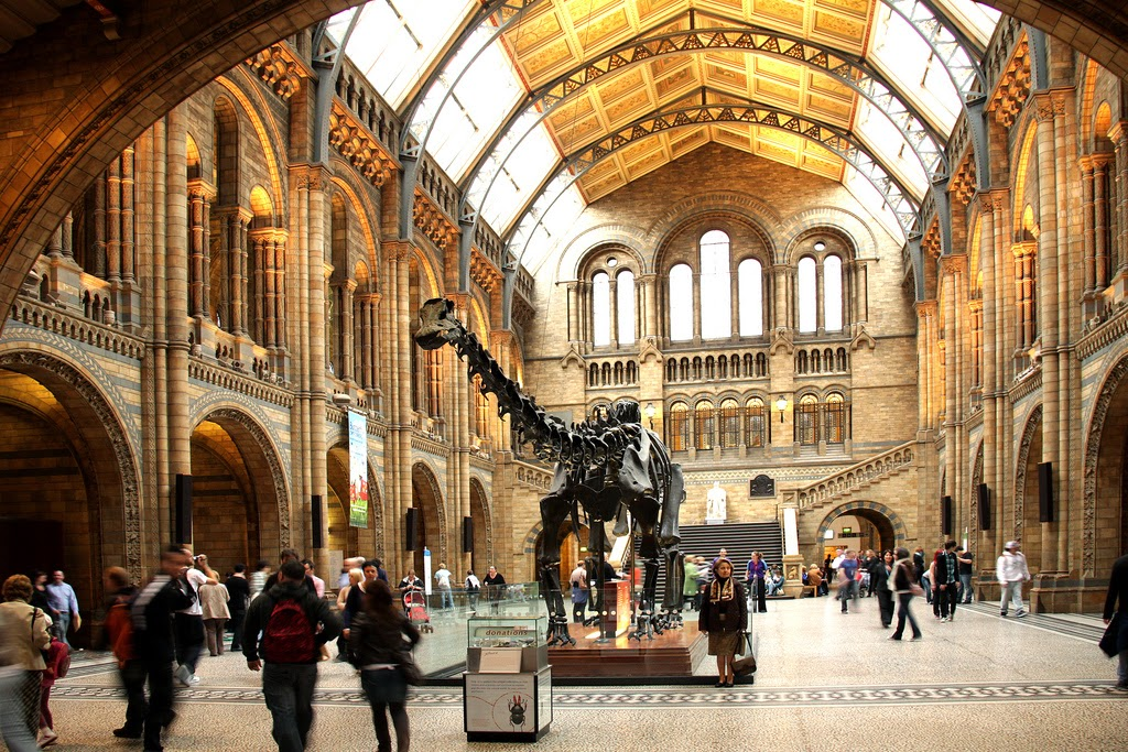 How To Get Into The Natural History Museum