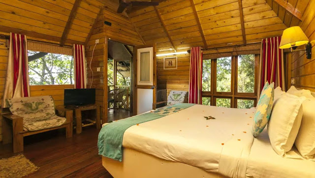Great escape munnar tree house best deal