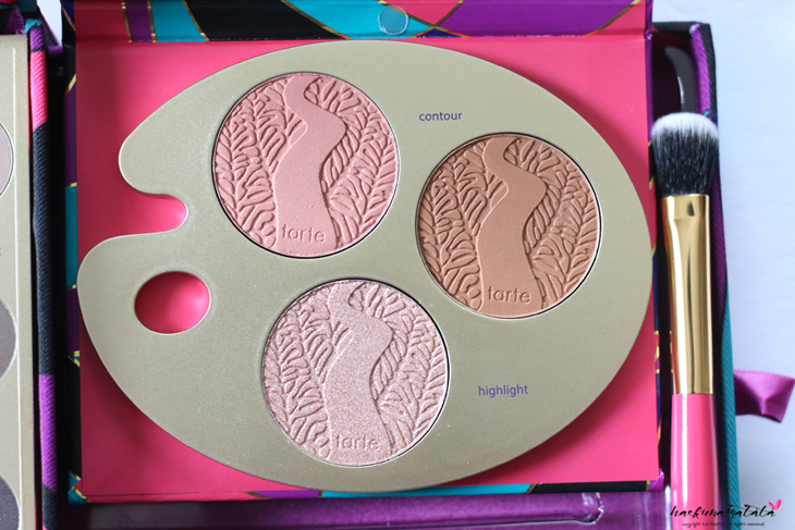 Tarte Tarteist Paint Palette Collector's Set Review & Swatches
