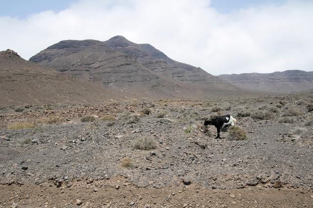 Paesaggio nei pressi del Faro de Punta Jandìa-Fuerteventura