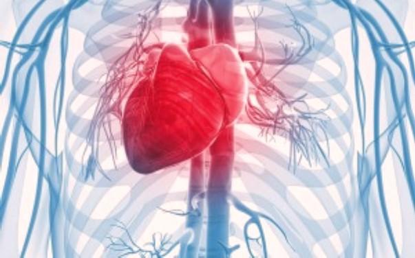 Makanan dan Sayuran Sehat Untuk Jantung