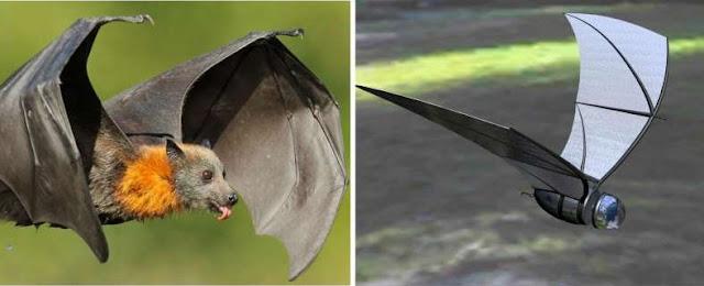 Pesawat Mata-Mata COM-BAT