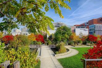 Paris : Jardin Serge Gainsbourg, un espace vert écologique construit sur le périphérique  - XIXème