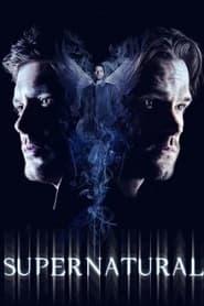 Supernatural [Temporada 14] [Español Latino] [13/20]