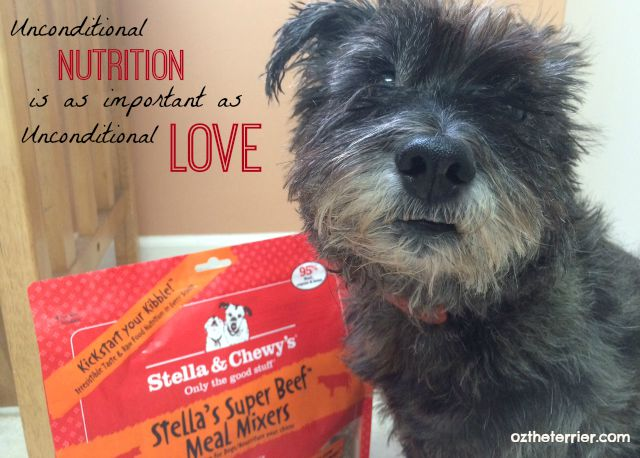 Stella and Chewy's raw pet food - Unconditional Nutrition is as important as Unconditional Love