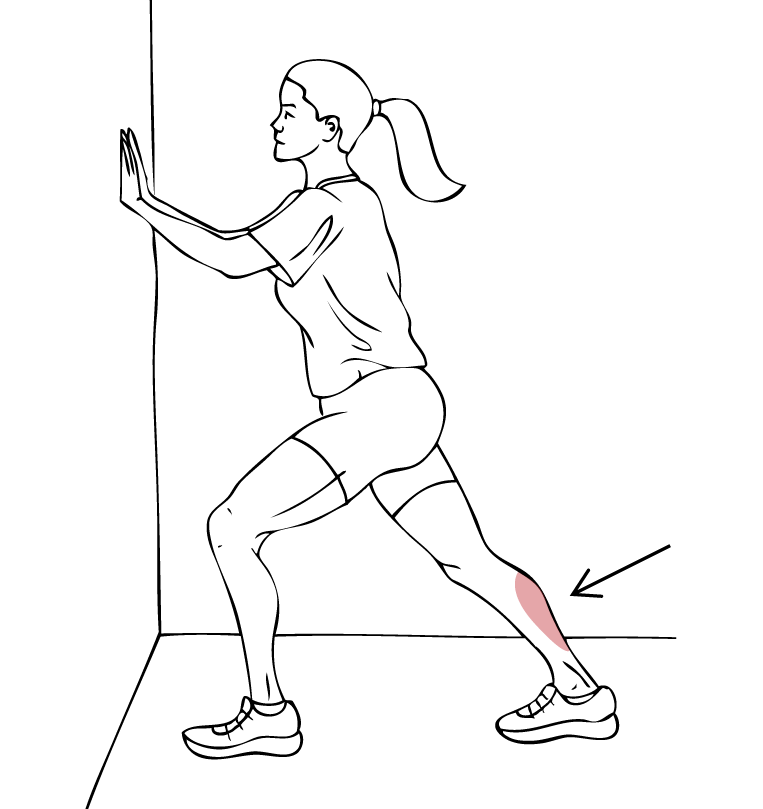 What are some stretching exercises for the shin and lower leg?