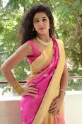 pavani new photos in saree-thumbnail-35