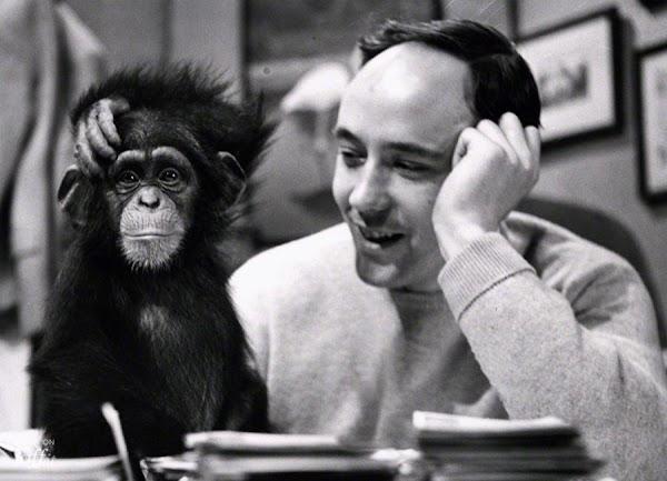 Desmond Morris | El Mono desnudo