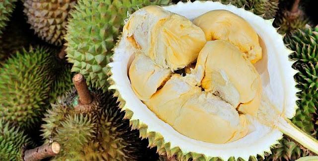 Durian manis dan lezat