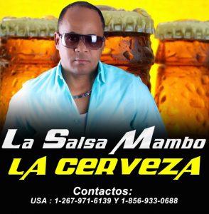 salsamambo2017-768x785-294x300