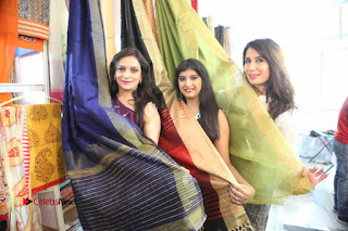 Silk India Expo Launch Stills  0094.JPG