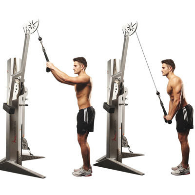 Tricep Workouts for Beginners